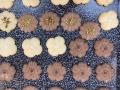 biscotti-di-frolla-montata08