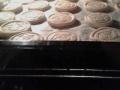 biscotti-fantasia-di-frolla02