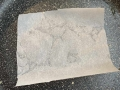 cialdine-al-Parmigiano08