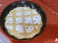 crostata-ricotta-canditi-bimby04