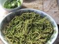 pesto-di-rucola-e-pistacchi04