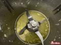 pesto-di-zucchine02