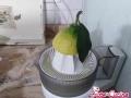 sorbetto-al-limone03