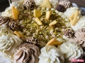 torta-gelato-al-pistacchio015