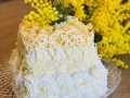 torta-mimosa19