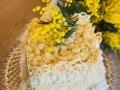 torta-mimosa21
