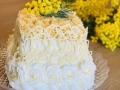 torta-mimosa22